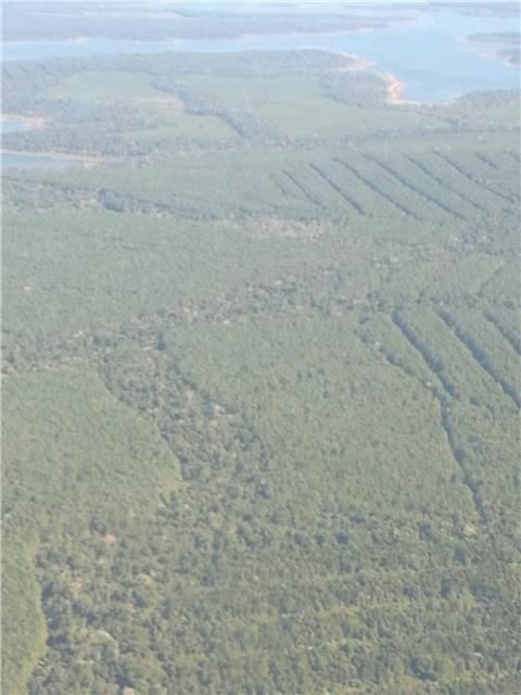 航拍——阿根廷的原始森林