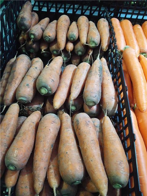 一大早去超市买胡萝卜~