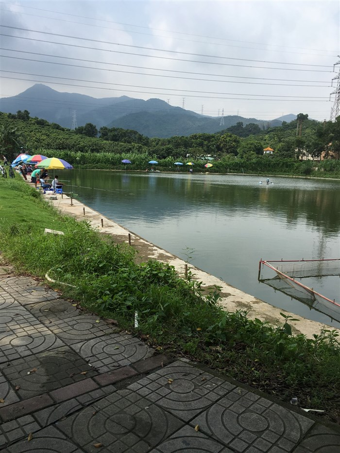 毕节小河风景区钓鱼