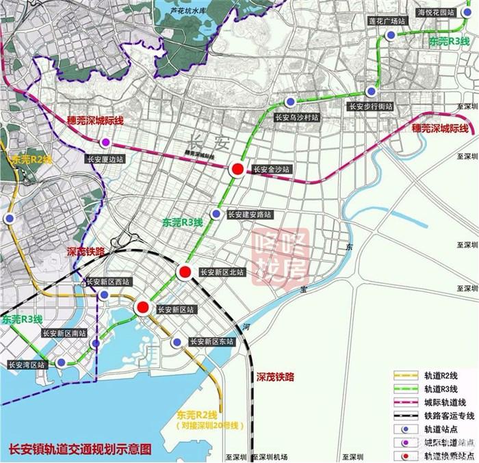 【活动直播】行走东莞05—滨海湾新区核心长安镇图片