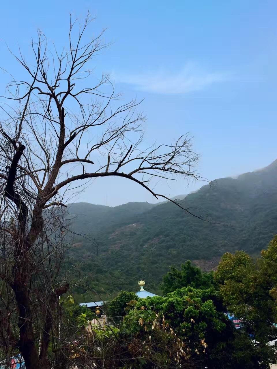 园山风景区,深圳的世外桃源